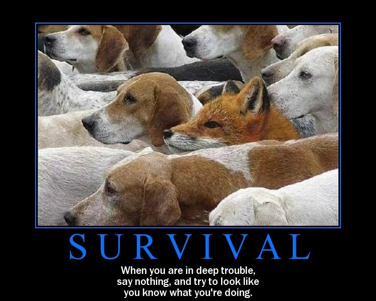 art de survivre