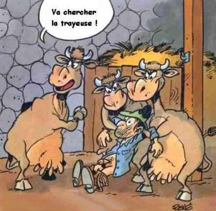 Trayeuse à vaches