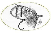 Forum de pêche à la mouche de Granby
