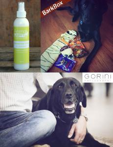 Idée cadeau - Produit pour chien chasse